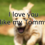 I love you tommy