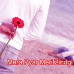 Mera Pyar Meri Zindgi  Love Story in Hindi