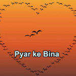 Pyar ke Bina Love Story – in Hindi