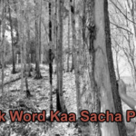 Ek Word Kaa Sacha Pyar Love Story – in Hindi