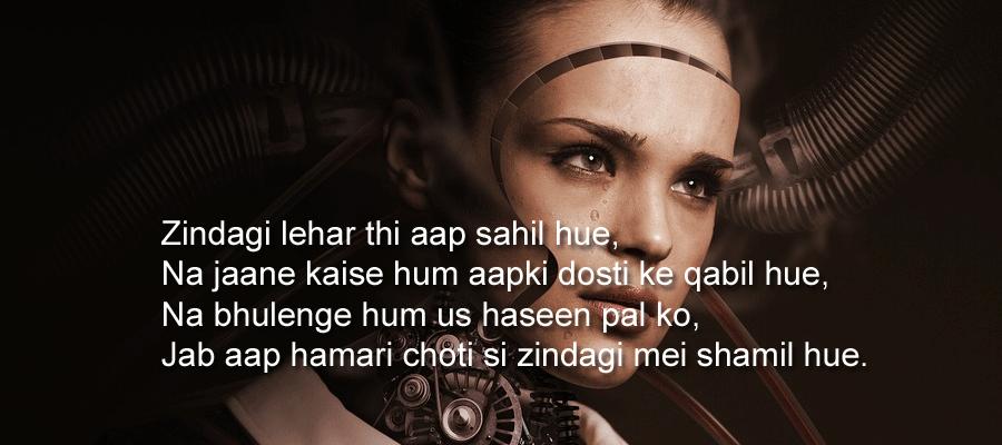 Meri Zindgi Love Story - in Hindi
