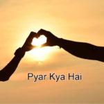 Pyar Kya Hai Story – in Hindi